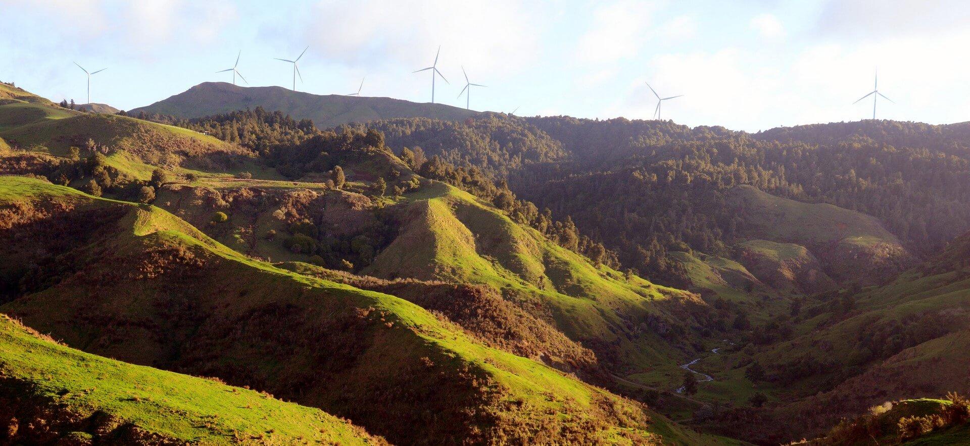 Waitetuna Wind Farm Trail Run